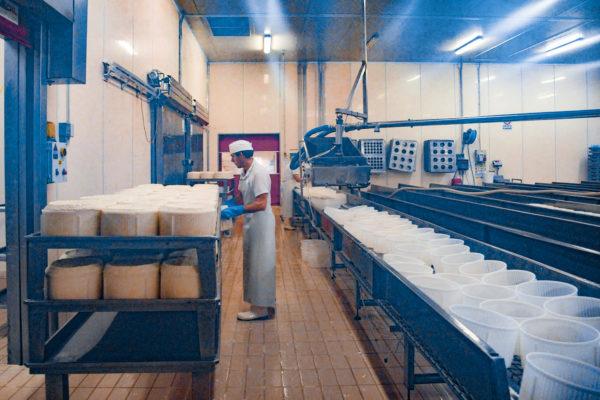 Azienda_produzione_02