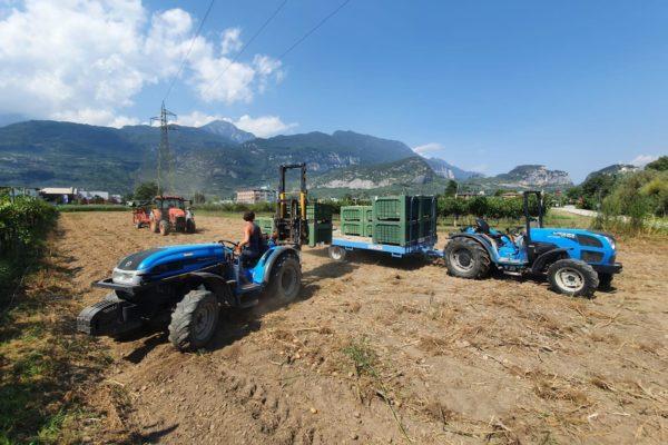 azienda agricola Briosi produzione