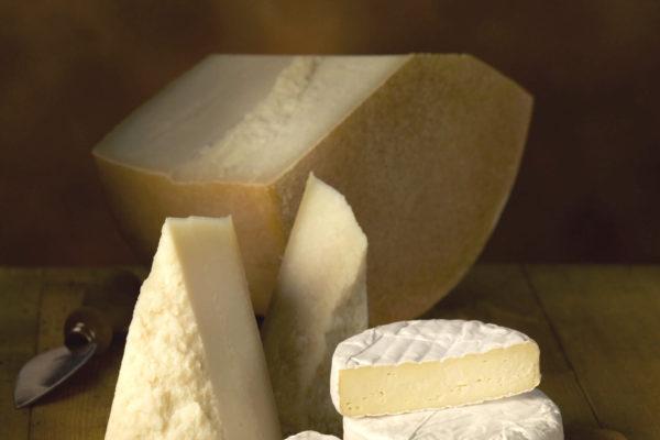 Latteria Lagundo formaggi