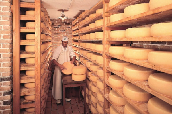 Latteria Lagundo formaggi cella