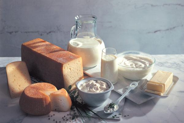 Latteria di Lagundo formaggi