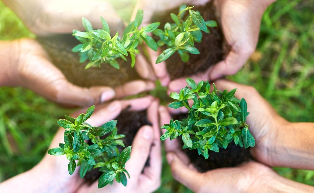sostenibilità protezione territorio ambiente DAO Conad