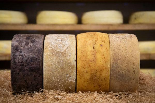 Caseificio Basso formaggi