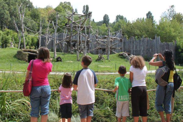 sezione faunistica Parco Natura Viva Bussolengo Verona