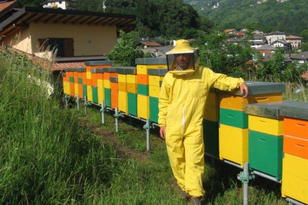 Edi Marcolla api e miele trentino