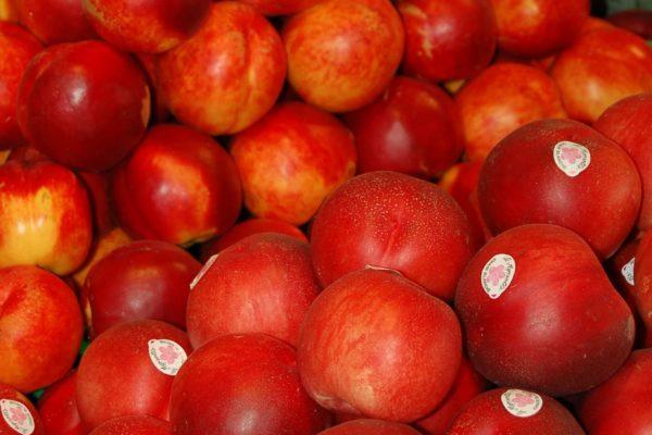 Conad City Ortisei frutta
